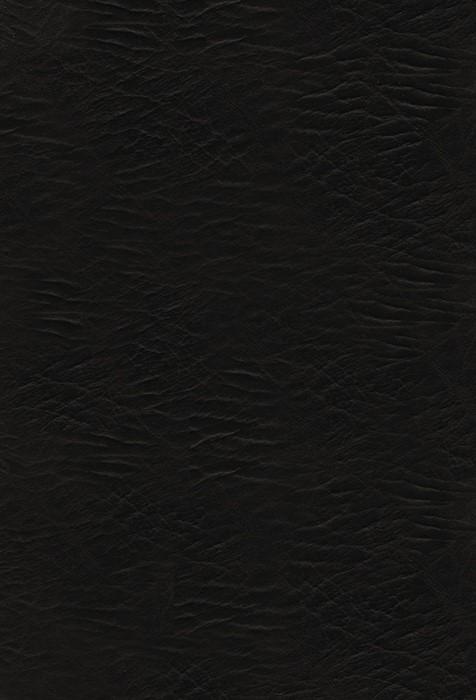 The KJV American Patriot's Bible (Bonded Leather)