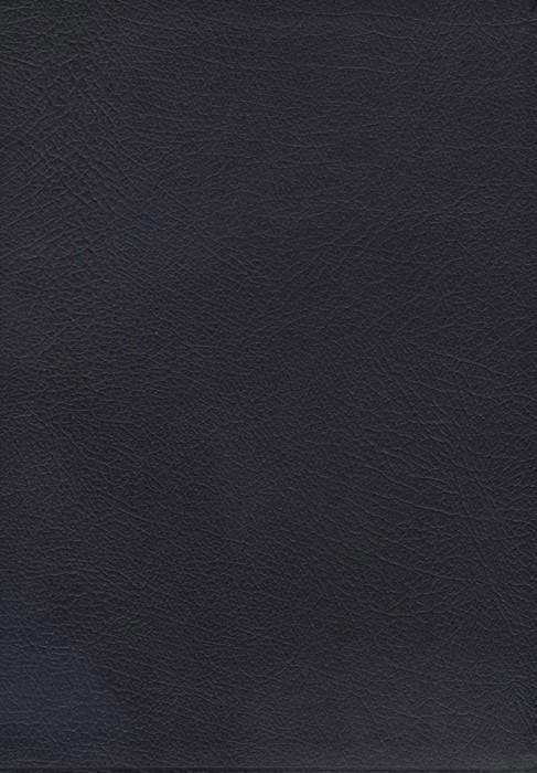 NASB Macarthur Study Bible (Bonded Leather)