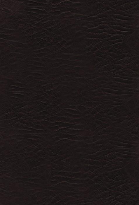 The KJV Woman's Study Bible (Bonded Leather)