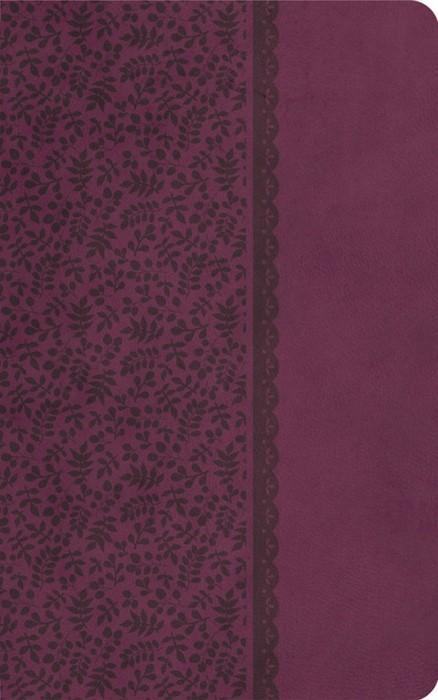 KJV Compact Ultraslim Bible (Hard Cover)
