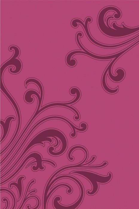 Kjv Gift Bible Pink Im/Le (Paperback)