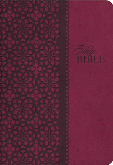 KJV Study Bible (Imitation Leather)