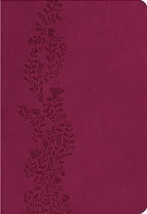 Kjv Ultraslim Bible (Paperback)