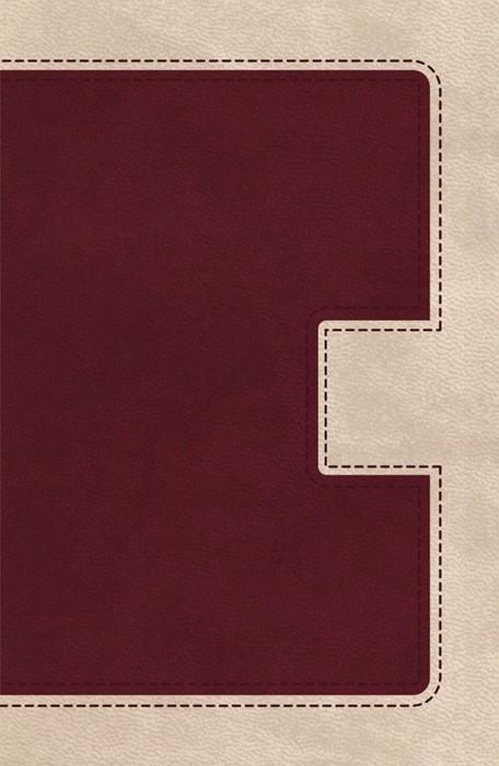 KJV Ultraslim Bible (Imitation Leather)