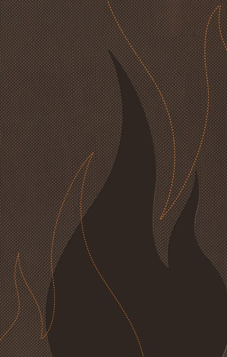 NKJV Ignite Bible for Teens Brown (Leather-Look)