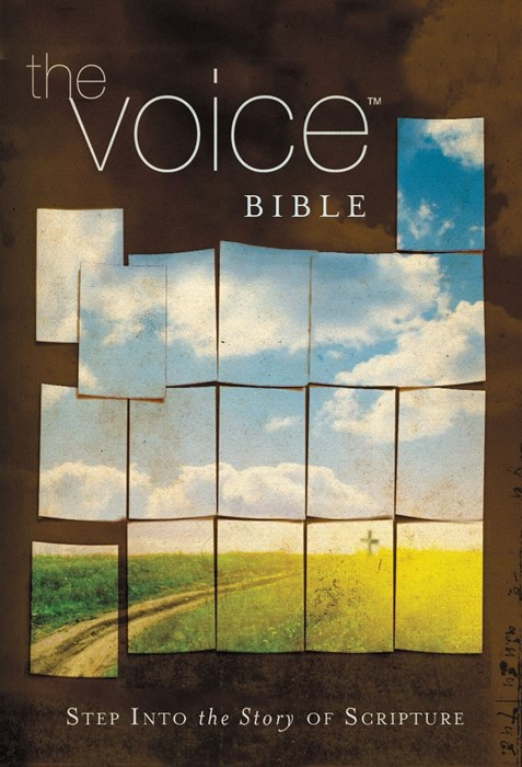 The Voice Bible (Hard Cover)
