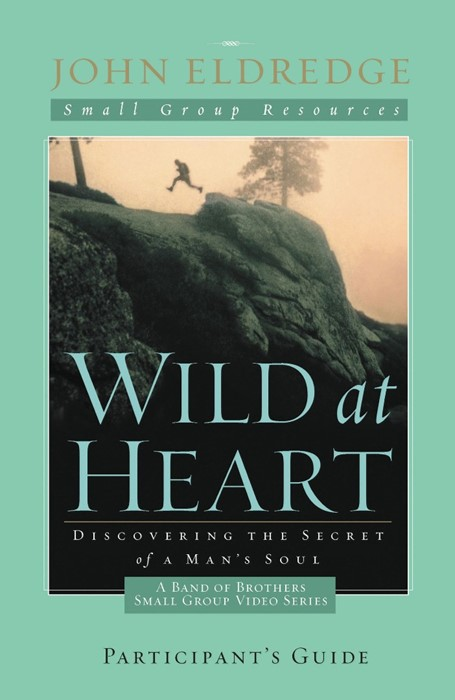Wild At Heart: A Band Of Brothers Small Group Participant's (Paperback)