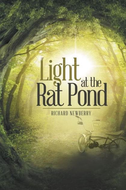 Light at the Rat Pond (Paperback)