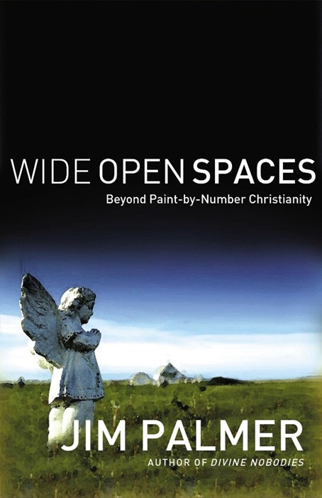 Wide Open Spaces (Paperback)
