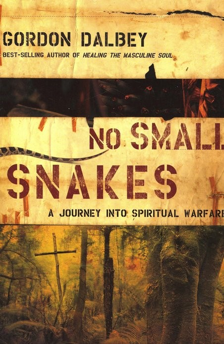 No Small Snakes (Paperback)