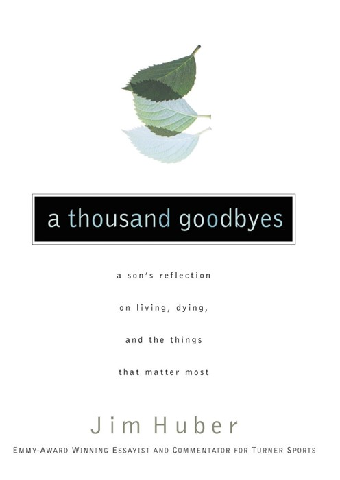 A Thousand Goodbyes (Paperback)