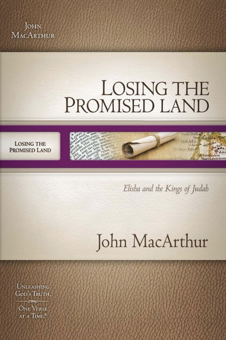 Losing the Promised Land (Paperback)