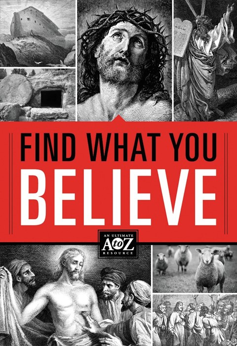 Find What You Believe (Paperback)