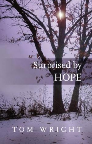 Surprised By Hope (Paperback)