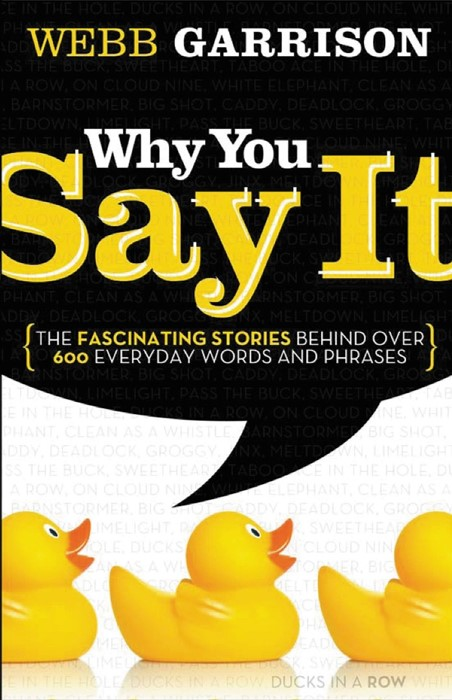 Why You Say It (Paperback)