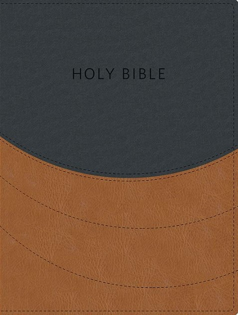 KJV Ministry Essentials Bible (Leather Binding)