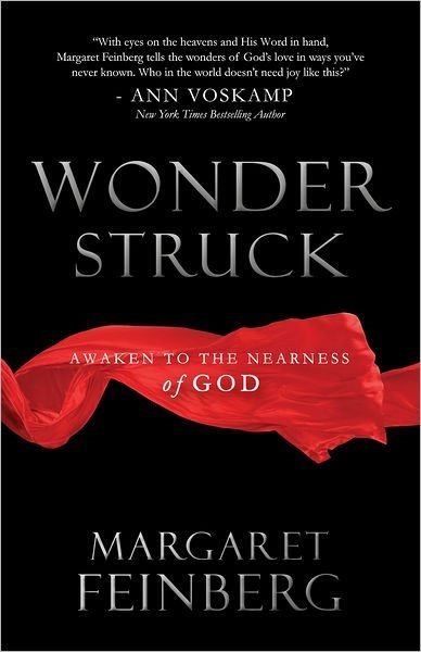 Wonderstruck (Paperback)
