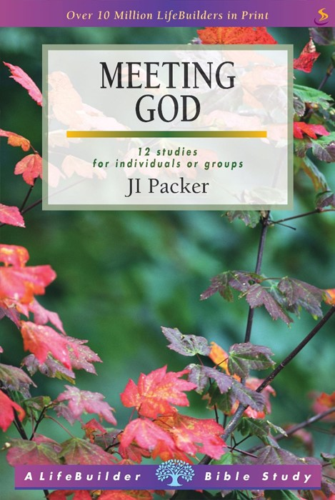 Lifebuilder: Meeting God (Paperback)