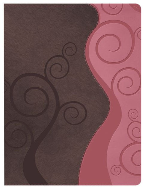 Apologetics Study Bible For Students, Pink/Brown (Imitation Leather)