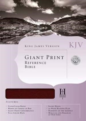 KJV Giant Print Reference Bible, Charcoal Leathertouch (Imitation Leather)