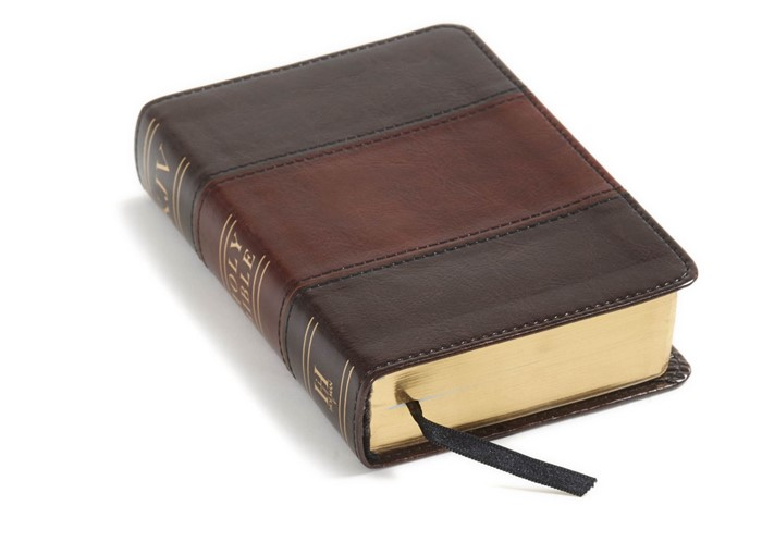 KJV Large Print Compact Reference Bible, Saddle Brown (Imitation Leather)