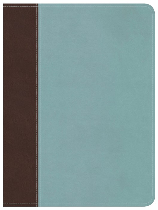 HCSB Life Essentials Study Bible, Brown / Blue  Indexed (Imitation Leather)