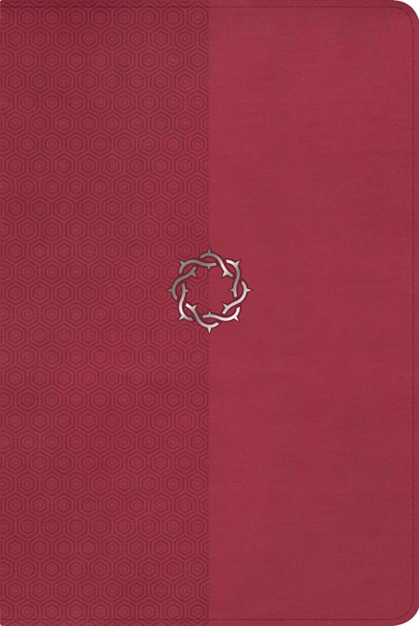 NKJV Essential Teen Study Bible, Rose Leathertouch (Imitation Leather)
