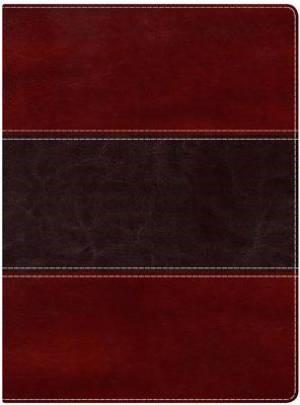 NKJV Holman Full Colour Study Bible Mahogany, Indexed (Imitation Leather)