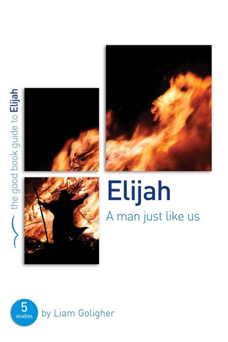 Elijah: A Man Just Like Us (Good Book Guide) (Paperback)