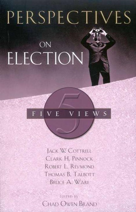 Perspectives On Election (Paperback)