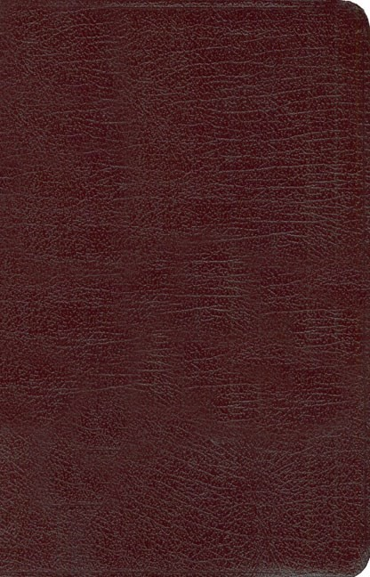 NIV New Women's Devotional Bible, Burgundy (Bonded Leather)