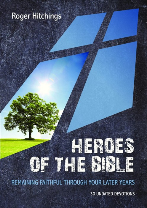 Heroes Of The Bible Devotional (Paperback)