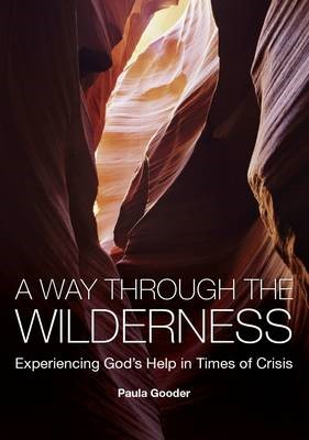 Way Through The Wilderness, A (Paperback)
