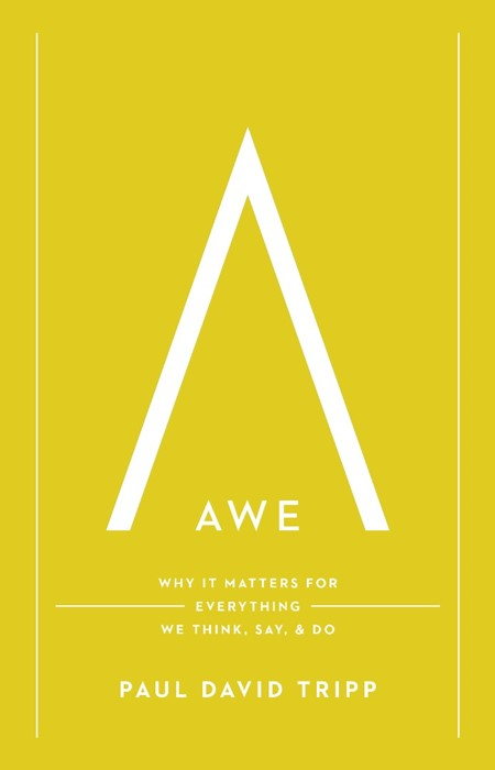 Awe (Hard Cover)