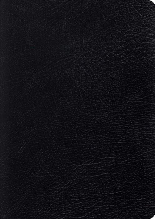 ESV Study Bible, Large Print, Black (Genuine Leather)