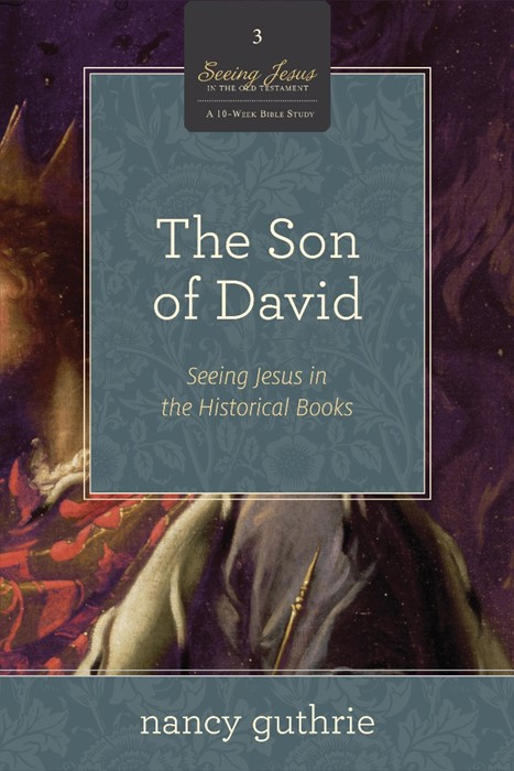 The Son Of David (Paperback)