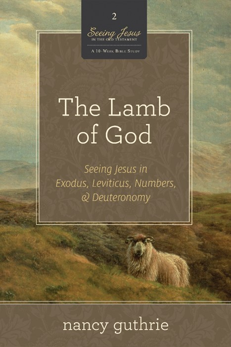 The Lamb Of God (Paperback)