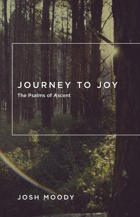 Journey To Joy (Paperback)