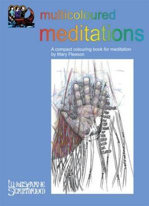 Multicoloured Meditations (Paperback)