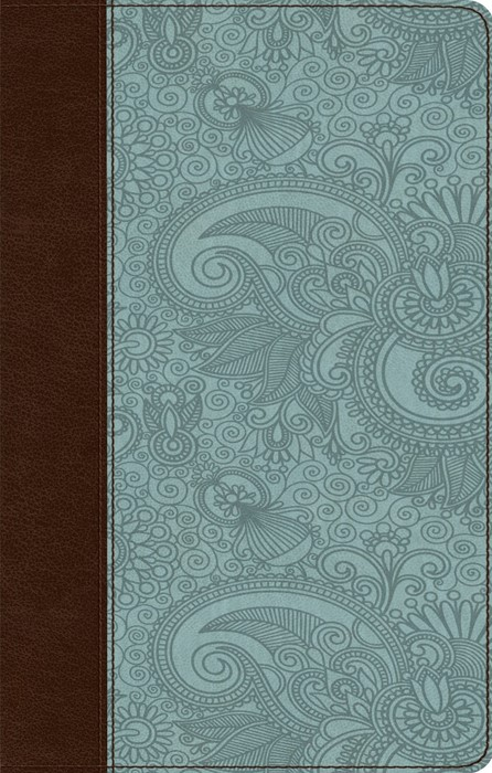 ESV Ultrathin Bible Trutone, Chocolate/Blue, Garden Design (Imitation Leather)