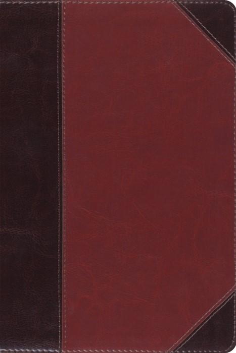 ESV Study Bible, Personal Size Trutone, Brown/Cordovan (Imitation Leather)