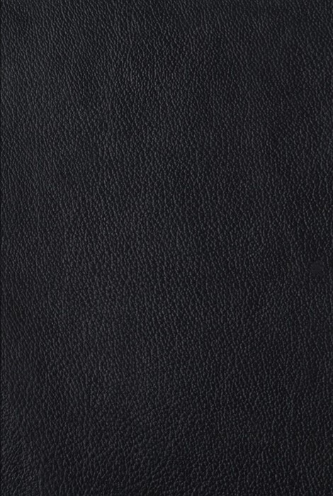 ESV The Four Holy Gospels (Genuine Leather Over Board) (Leather Binding)