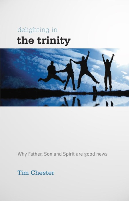 Delighting in the Trinity (Paperback)