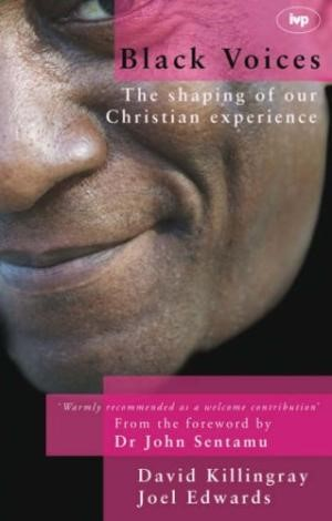 Black Voices (Paperback)