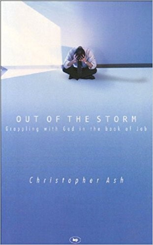 Out Of The Storm (Paperback)