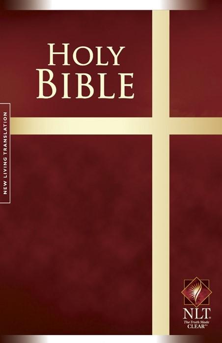 NLT Worldwide Edition Burgundy Paperback (Paperback)