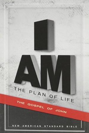 NAS Plan Of Life-Gospel Of John (Paperback)