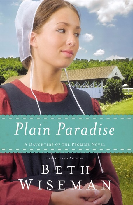 Plain Paradise (Paper Back)