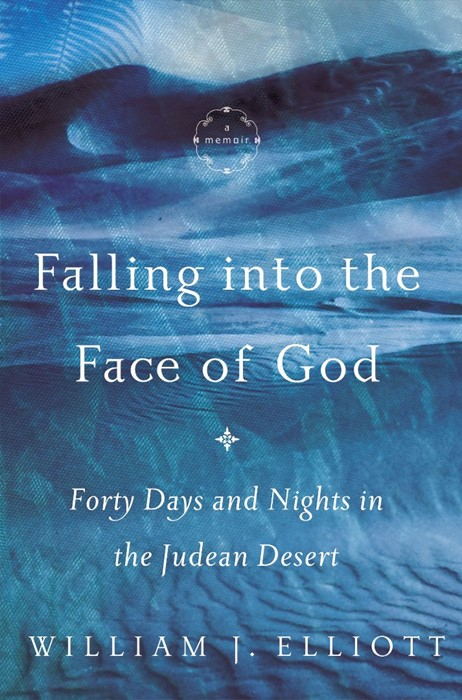Falling into the Face of God (Hard Cover)