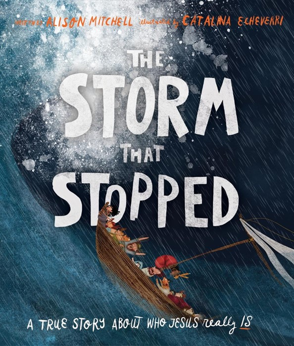 The Storm That Stopped (Hard Cover)